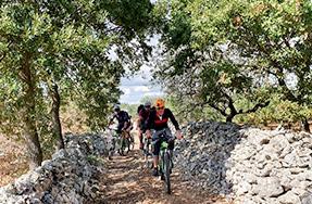 Tour escursione bici Puglia