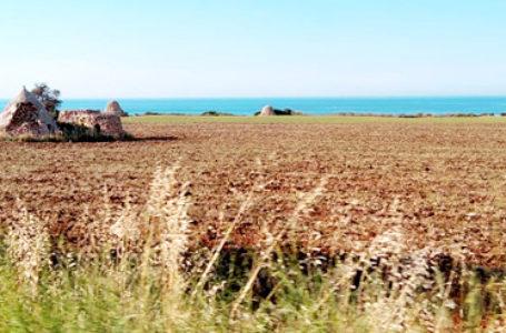 Amore per la Puglia: la famiglia Beckham ci ritorna per le vacanze