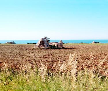 Vacanze in Puglia Beckham