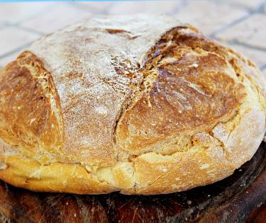 Pane di Altamura Puglia Italy