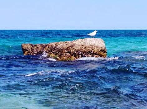 qualità mare Bari Puglia
