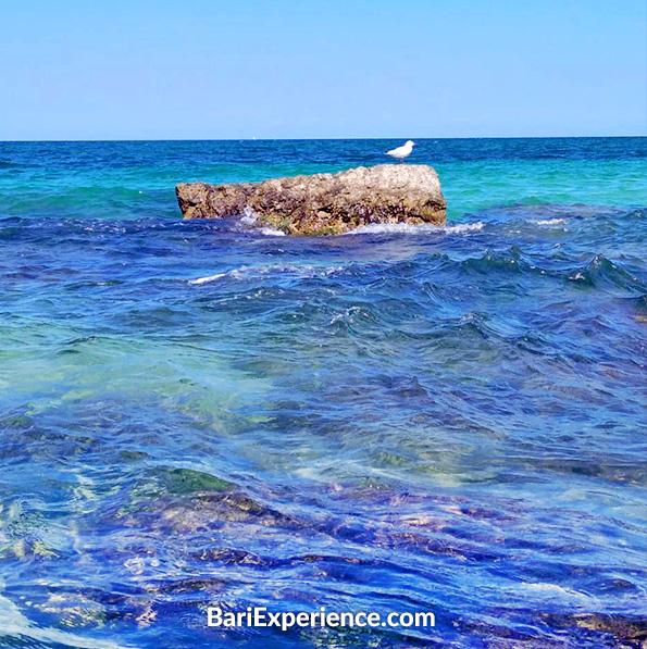 Spiagge Torre a Mare Bari Puglia